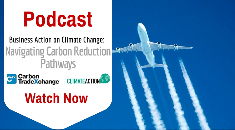 Business Action on Climate Change: Navigating Carbon Reduction Pathways