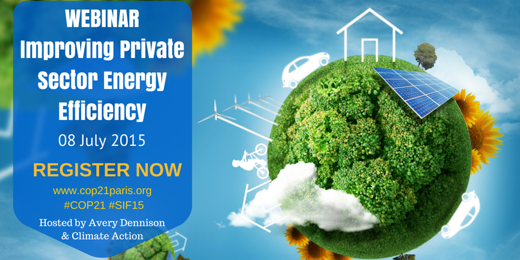 Improving Private Sector Energy Efficiency
