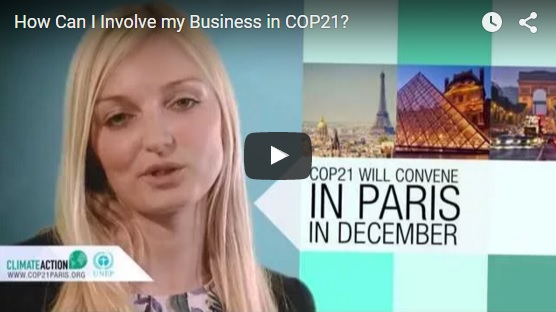 How Can Business Engage at COP21?