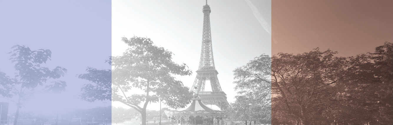 Statement by Nick Henry, CEO of Climate Action, on the Paris Attacks of 13 November
